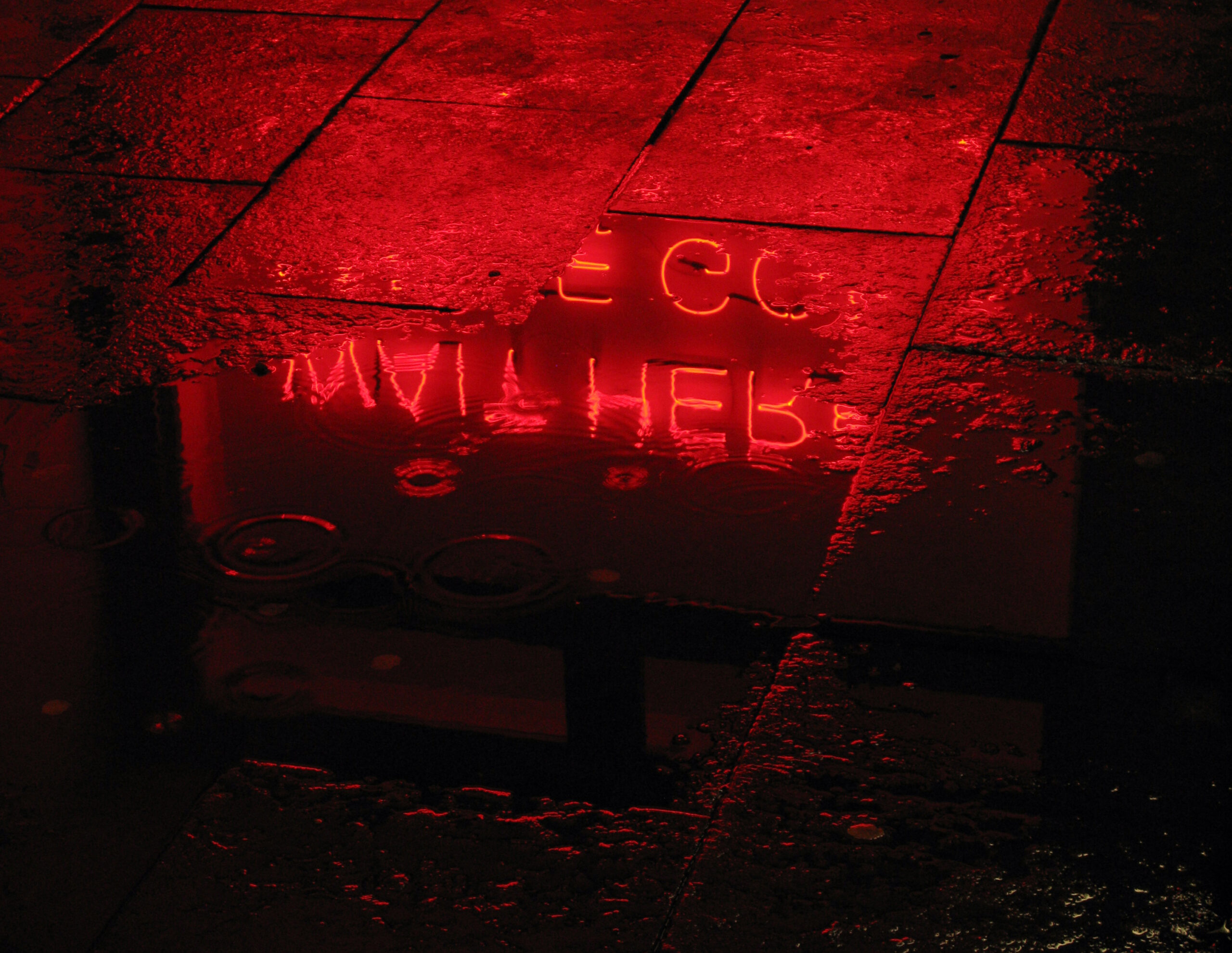 Neon work from Tim Etchells reflecting in water